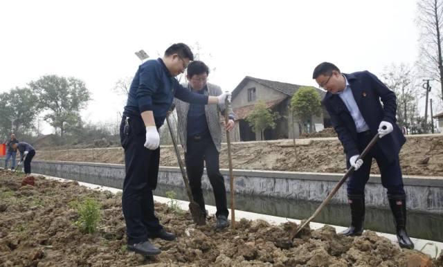 增添一抹绿色 收获一片希望:医院开展春季植树活动