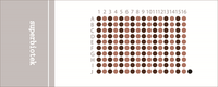 胰腺癌带生存期组织芯片(PAC1602)
