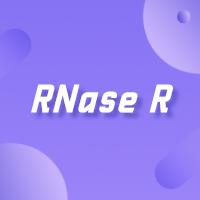 RNase R