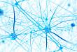 ECT 治疗抑郁障碍:功能改善和残余症状的神经影像学