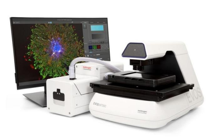 EVOS M7000全自动活细胞成像系统