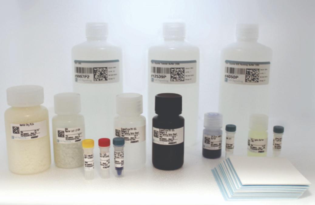 Western Blotting Application Solutions Kit