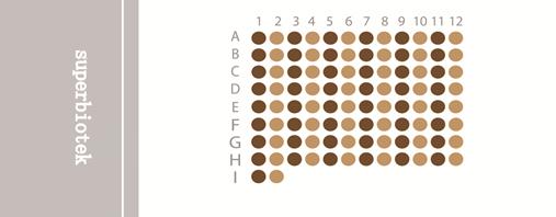 食管癌生存期组织芯片(ESC968)