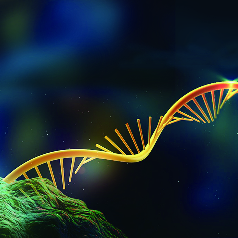 MeRIP测序   核酸-蛋白互作研究