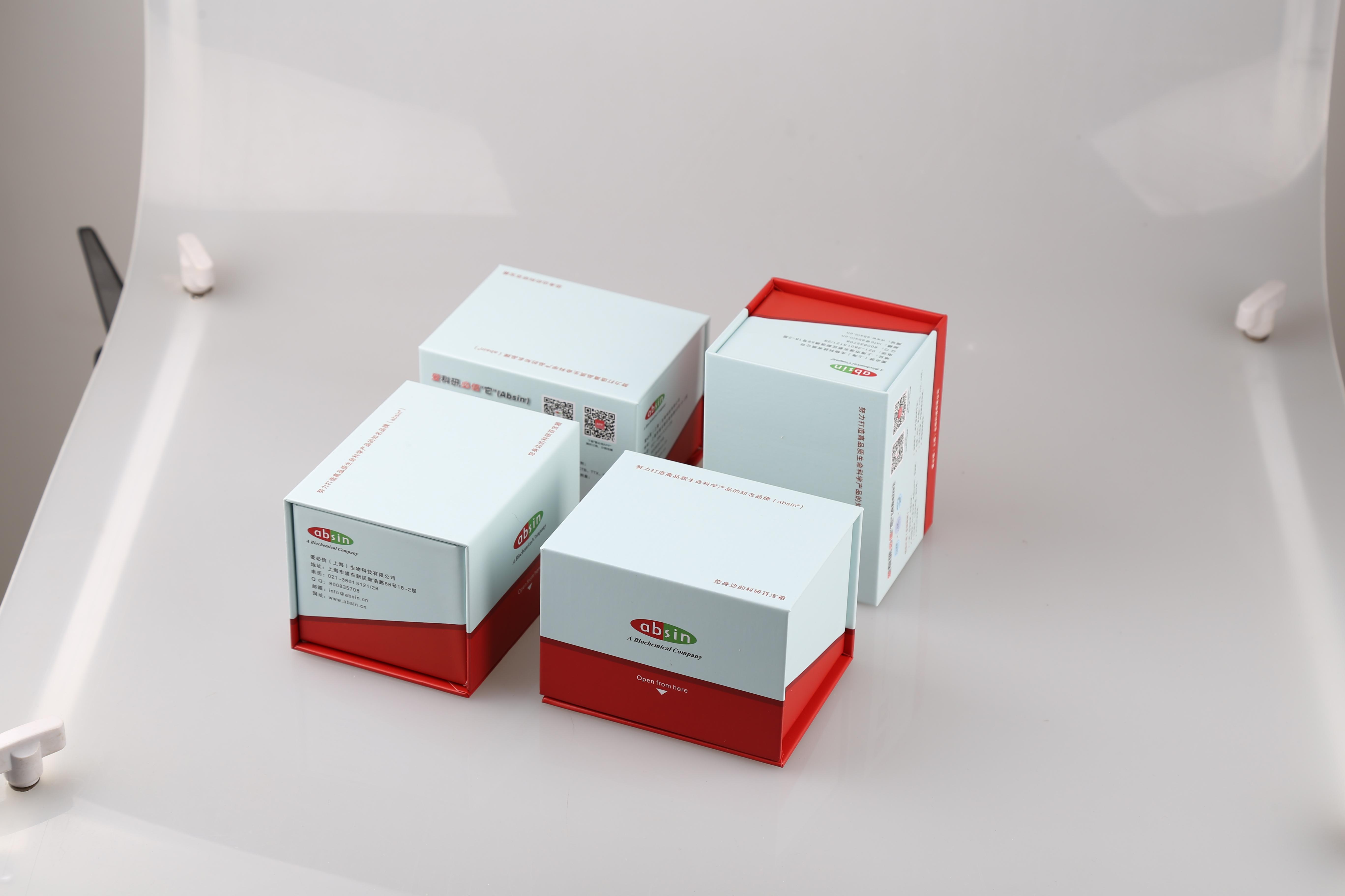 即用型高效免疫组化二抗试剂盒