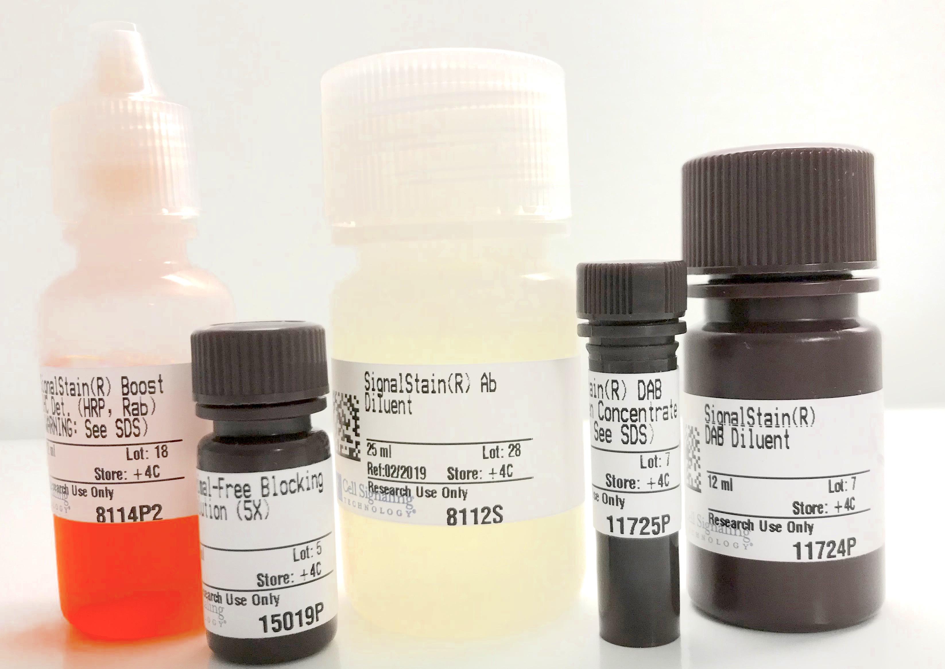 Immunohistochemistry Application Solutions Kit (Rabbit)