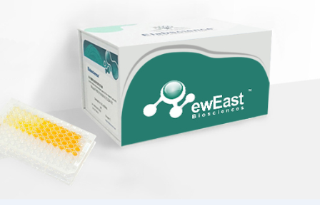 SARS-CoV-2 N protein ELISA Kit
