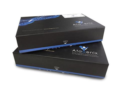 包涵体纯化试剂盒 / Inclusion bodies Purification assay kit