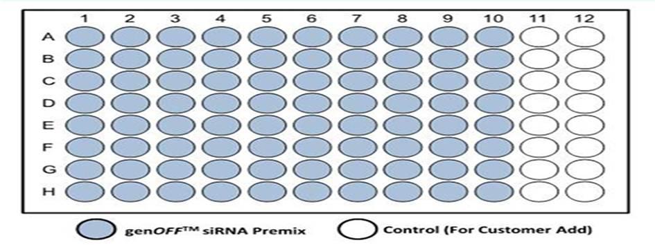 人源编码基因siRNA文库