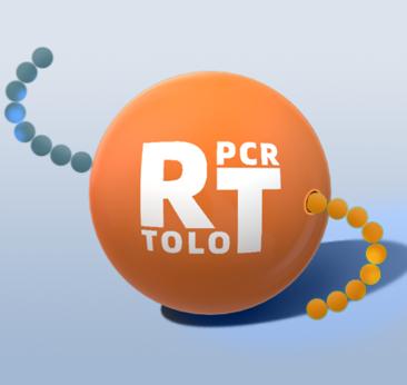 ToloScript RT EasyMix for qPCR 反转录酶