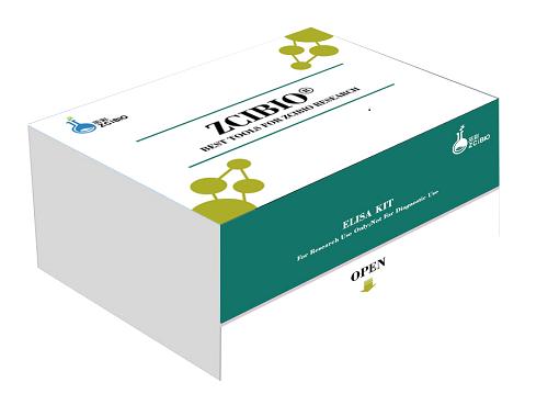 大鼠细胞间粘附分子1(ICAM-1)ELISA试剂盒