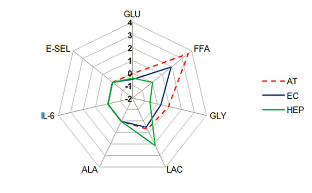 Quasi Vivo流动共培养糖尿病模型cross-talk 中国一级代理商北京泽平
