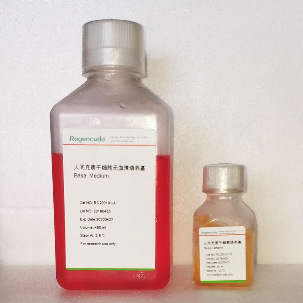 定型内胚层高效分化试剂盒