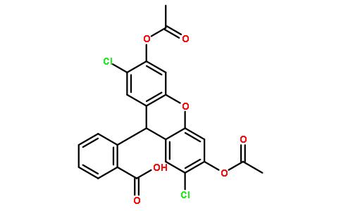 4091-99-0/2',7'-二氯荧光素二乙酸酯