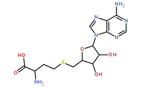 979-92-0/S-腺苷高半胱氨酸