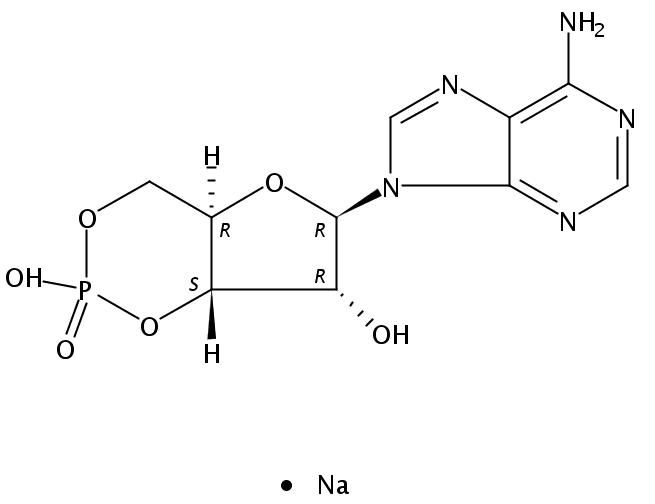37839-81-9/环磷酸腺苷钠盐