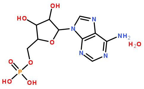 18422-05-4/5′-腺苷一磷酸一水物