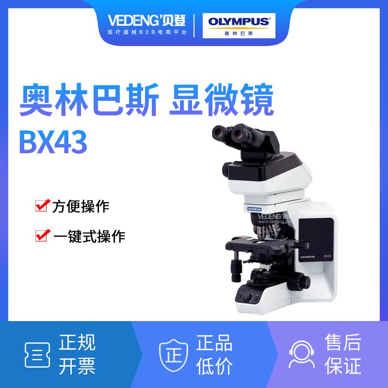 奥林巴斯正置显微镜BX43