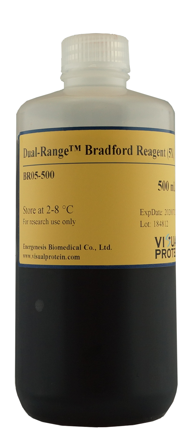 Dual-Range Bradford Protein Assay Kit