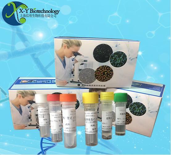 莫拉氏菌属通用荧光定量PCR试剂盒--探针法