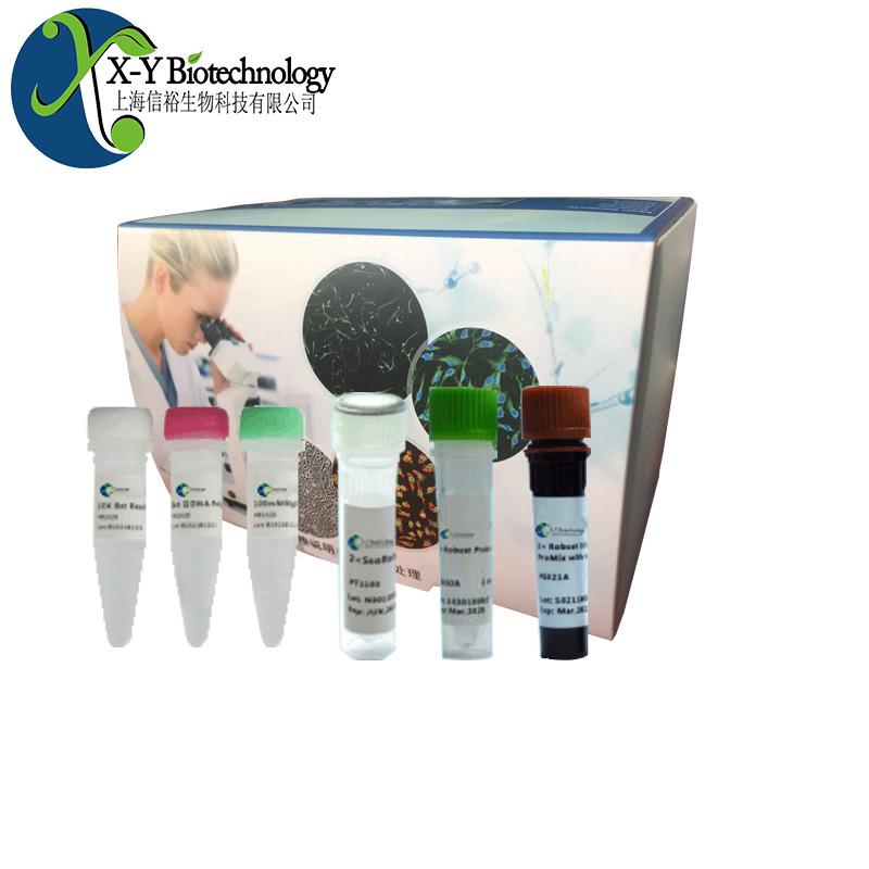 禽网状内皮组织增殖病病毒荧光定量PCR试剂盒--探针法