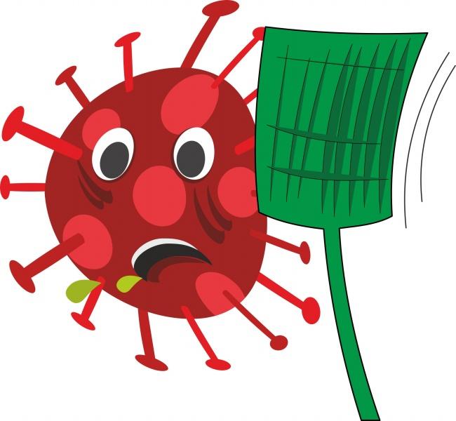 HPV 假病毒