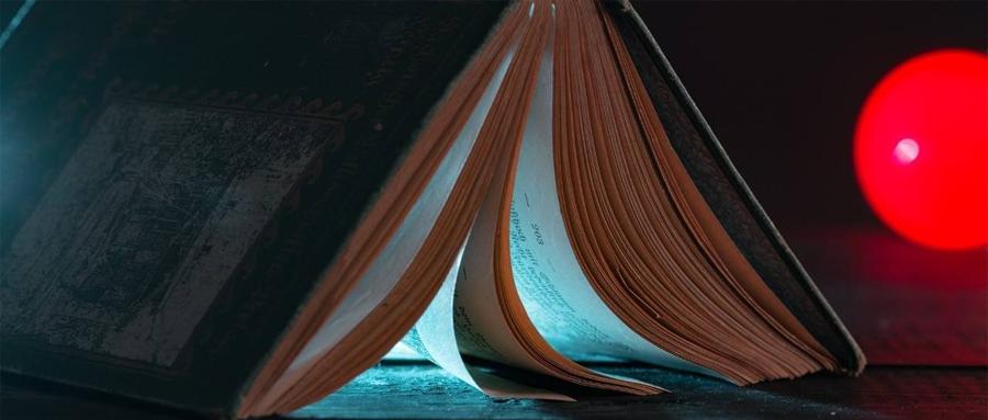阅读质粒图谱