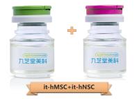 科研级it-hMSC+科研级it-hNSC组合系列产品服务