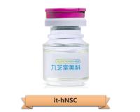 科研级缺血耐受人神经干细胞(it-hNSC)系列产品服务