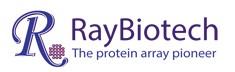 Mouse anti-Zebrafish INHA (4C3-D9-H5-E7) [+Biotin]