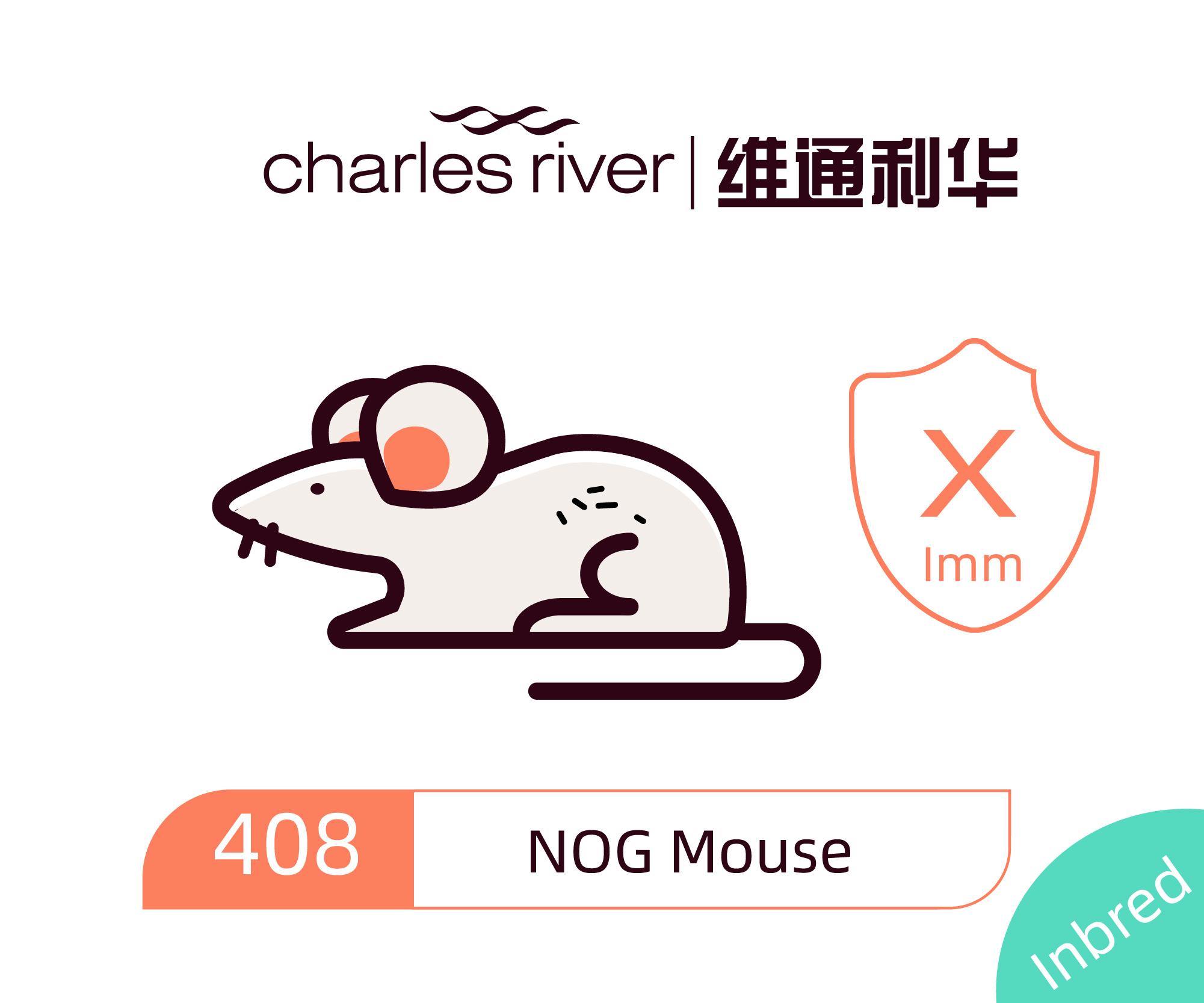 维通利华 NOG小鼠 重度联合免疫缺陷鼠 CIEA正版授权
