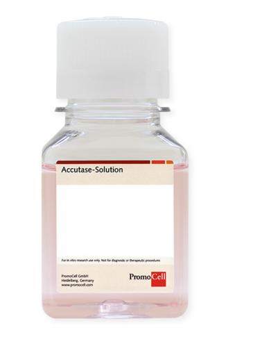 Accutase 消化酶溶液