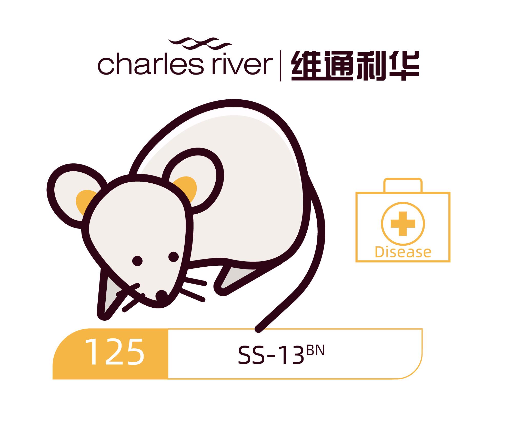 维通利华 SS-13BN大鼠 SPF级 盐敏感大鼠对照