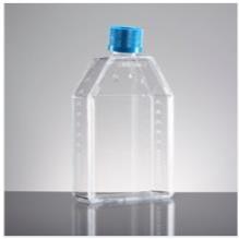 BD falcon 细胞培养瓶25cm2 50ml斜颈 透气盖