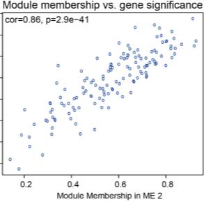WGCNA功能模块分析