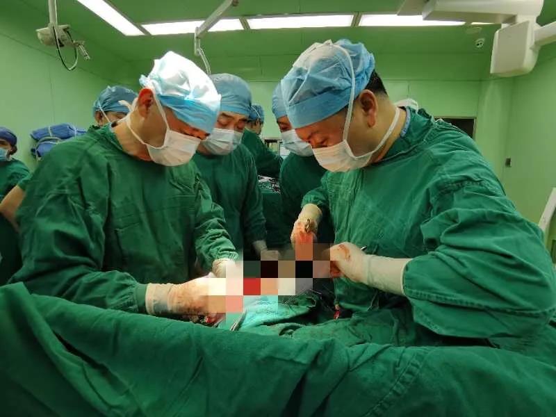 一例肺移植手术背后的故事:生死时速「1+3」
