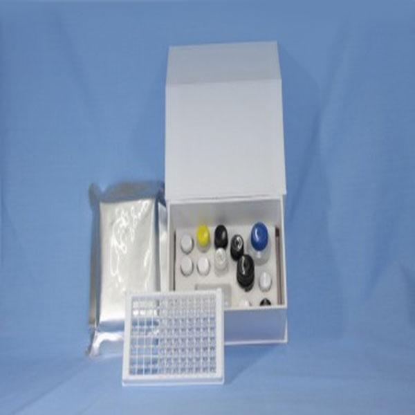 猪伪狂犬病毒gB蛋白抗体检测试剂盒