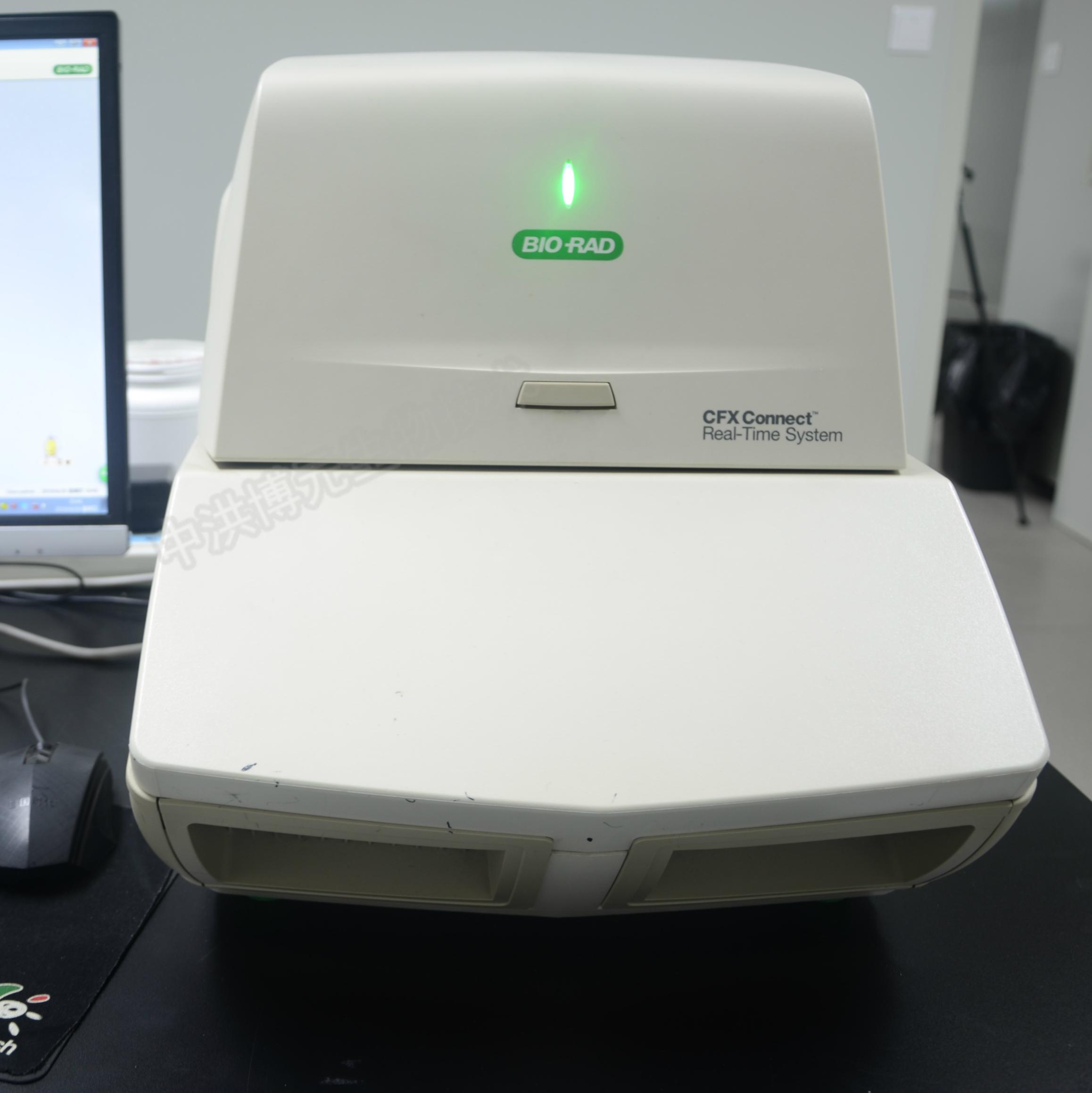 荧光定量PCR