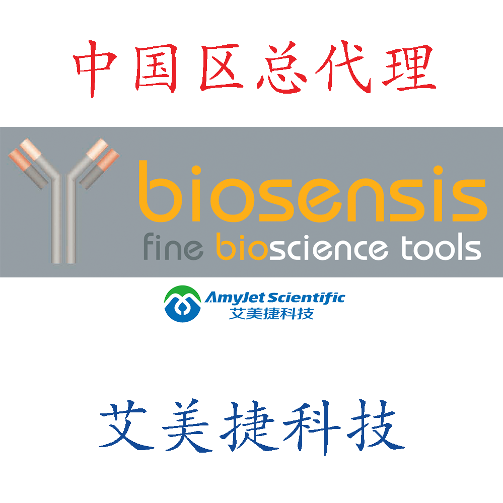 小鼠来源毒性抗体:人类激肽释放酶-8【2F11】:IgG/小鼠来源毒性抗体:人类激肽释放酶-8【2F11】:IgG/小鼠来源毒性抗体:人类激肽释放酶-8【2F11】:IgG