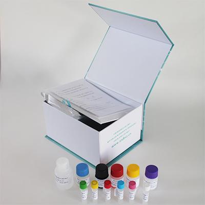 人褪黑素(MT)ELISA试剂盒