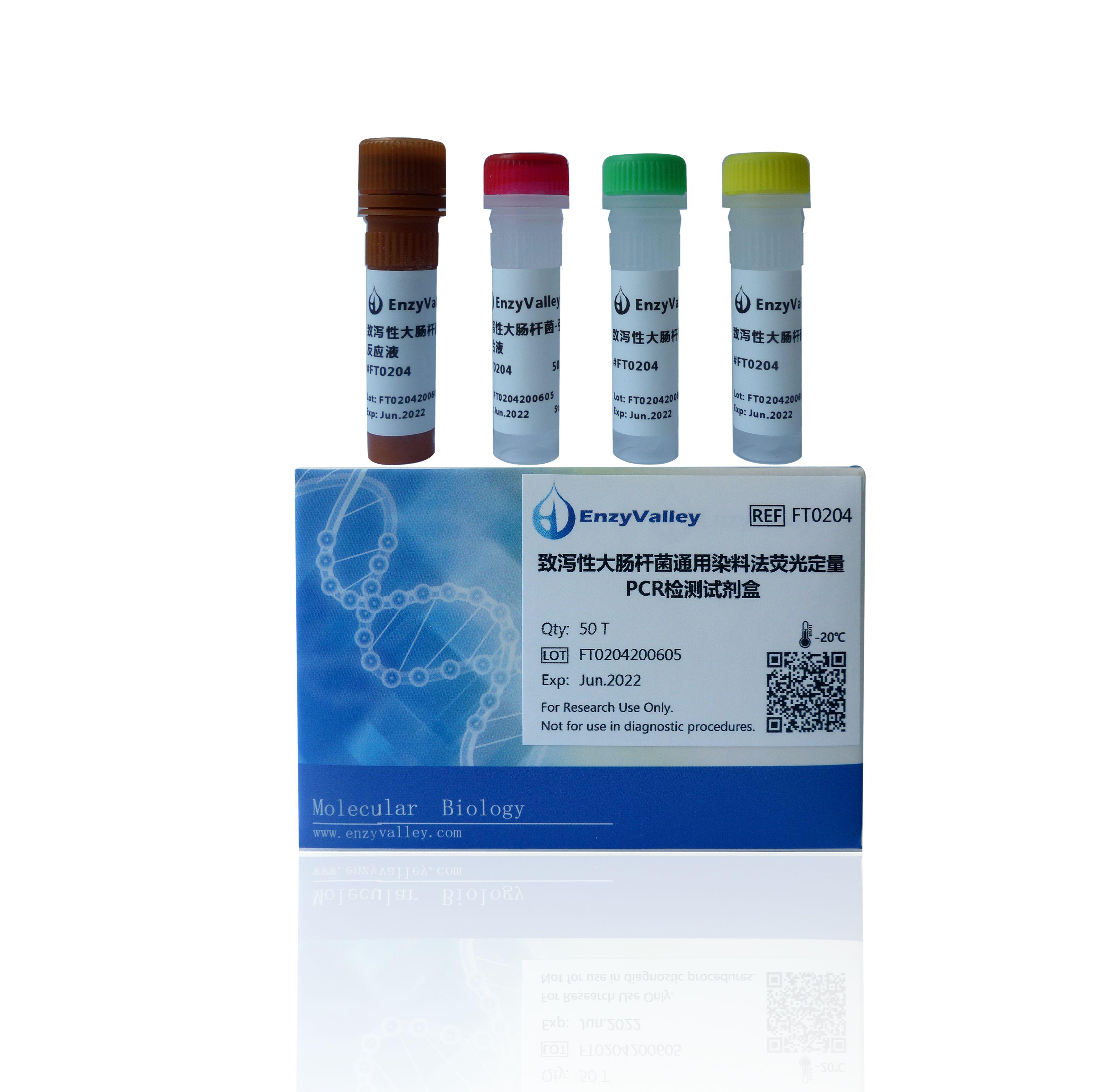 致泻性大肠杆菌通用染料法荧光定量PCR检测试剂盒