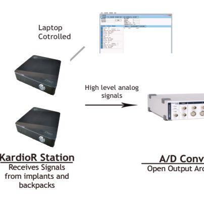 Zyac动物生理信号记录系统