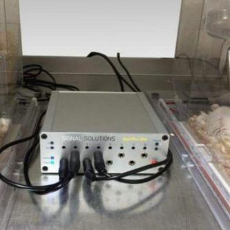 小鼠睡眠监测系统