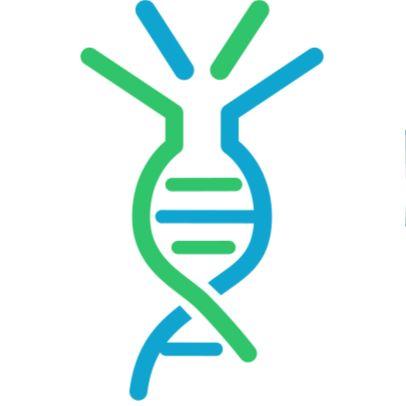 新冠病毒SARS-CoV-2 S protein RBD, His Tag