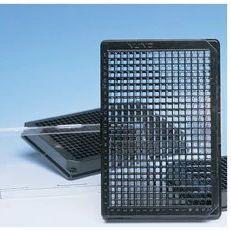 Thermo Scientific™ Nunc™ 聚合物底或盖玻片底 384 孔光学底板