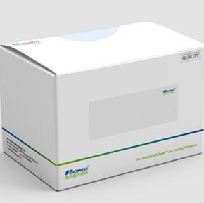 无内毒素质粒大量提取试剂盒(柱式法)
