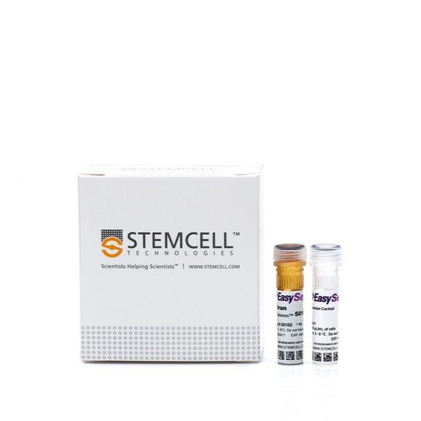 EasySep™人CD8 T细胞分选试剂盒