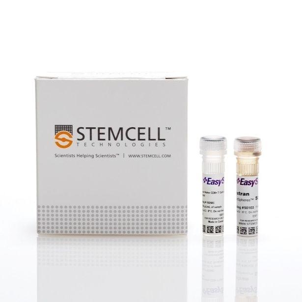 EasySep™人Naïve CD8+ T细胞分选试剂盒II