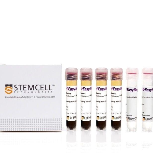 EasySep™Direct人嗜碱性粒细胞分选试剂盒