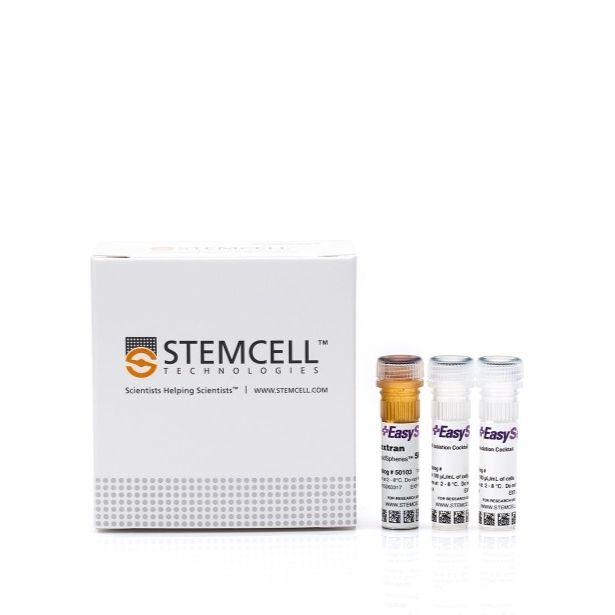 EasySep™人Naive B细胞分选试剂盒